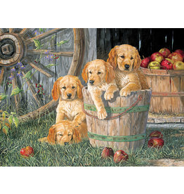Cobble Hill Puppy Pail - 350 Piece Puzzle