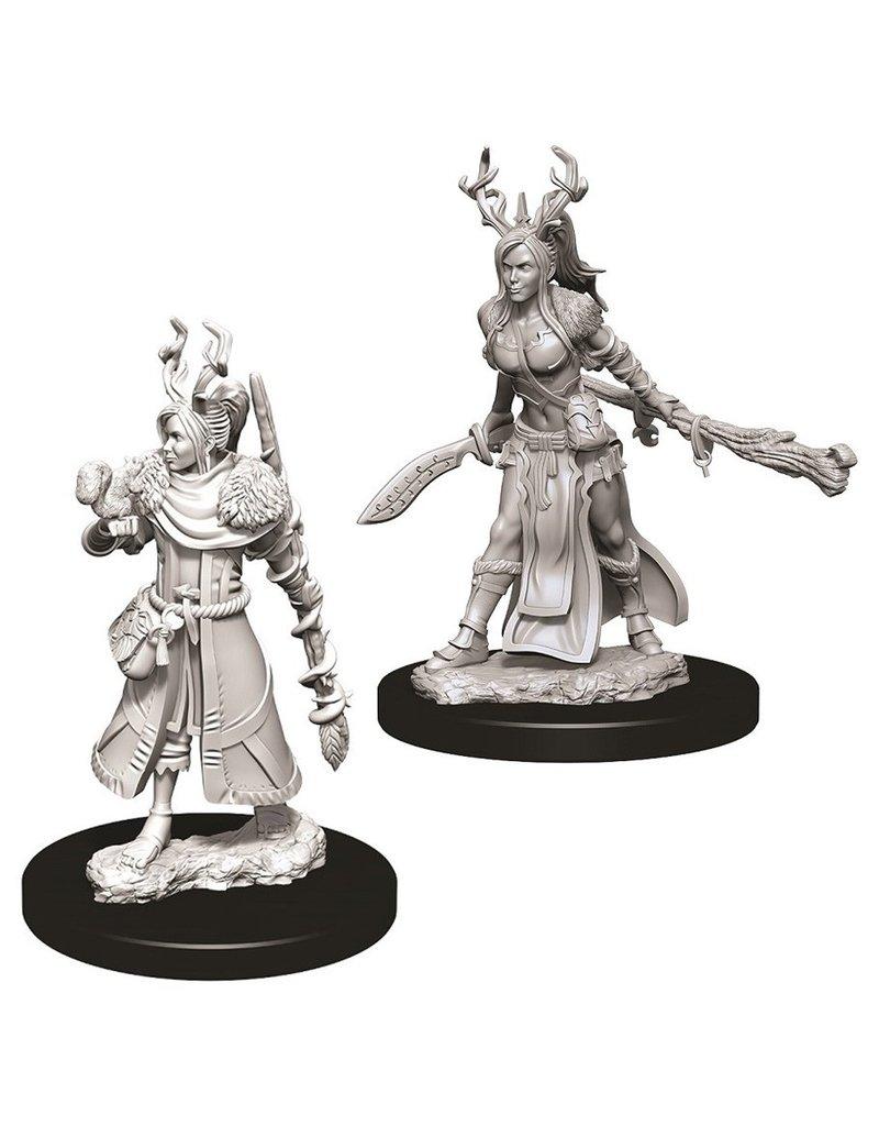 Wizkids D&D NMU: Female Human Druid