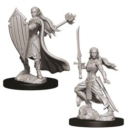 Wizkids D&D NMU: Female Elf Paladin