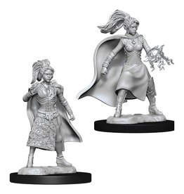 Wizkids D&D NMU: Female Human Sorcerer