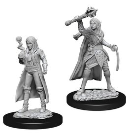 Wizkids D&D NMU: Female Elf Cleric