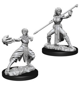 Wizkids D&D NMU: Female Half-Elf Monk