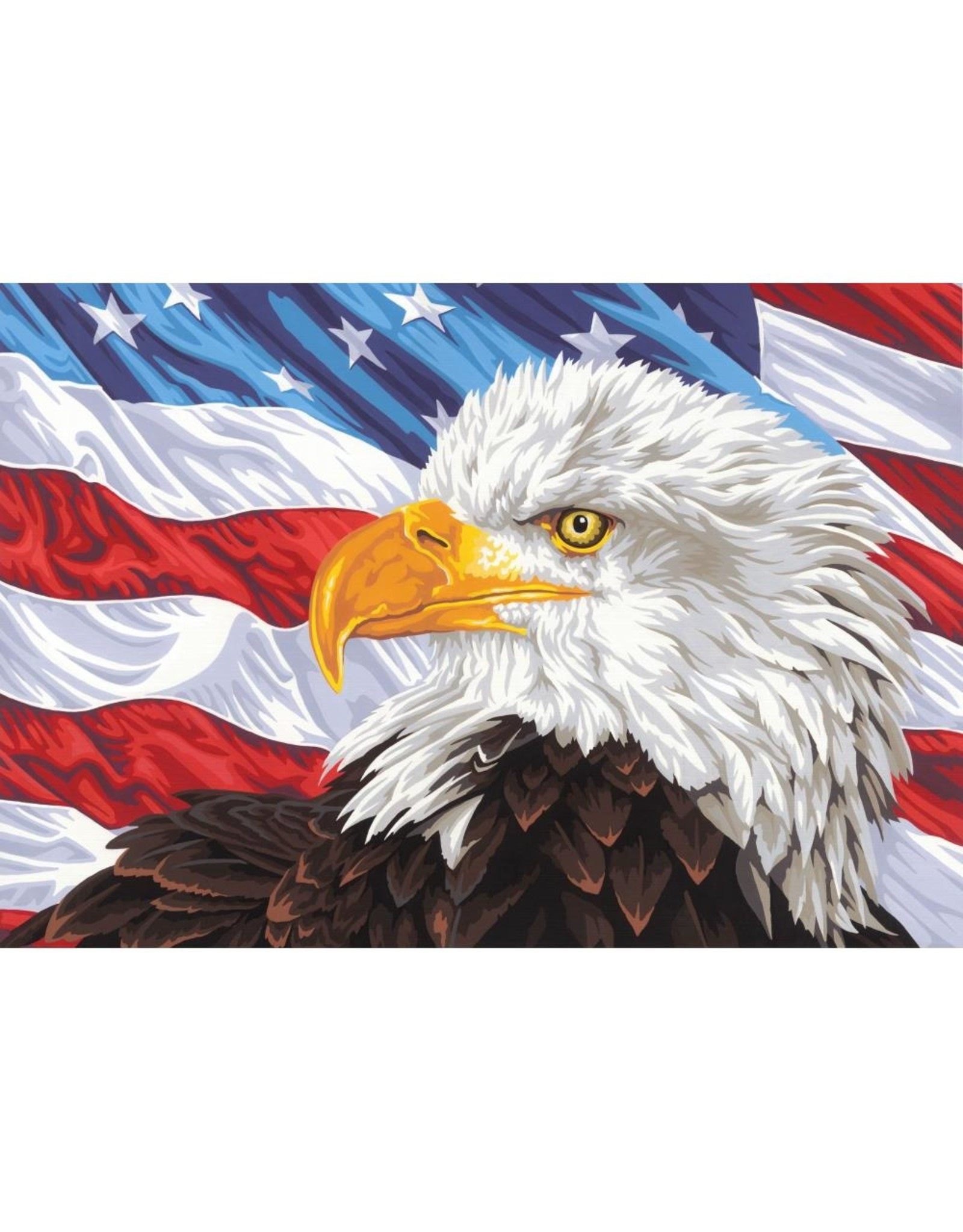 Dimensions Bald Eagle - 14x20 - Paint By Number