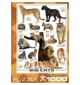 Eurographics Big Cats - 1000 Piece Puzzle