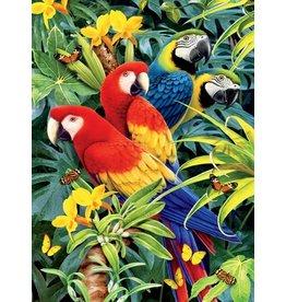 Ceaco Majetic Macaws - 1000 Piece Puzzle