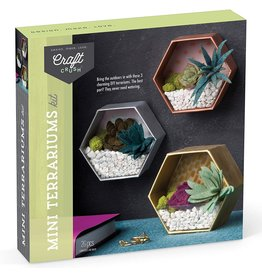 Ann Williams Group Mini Terrariums