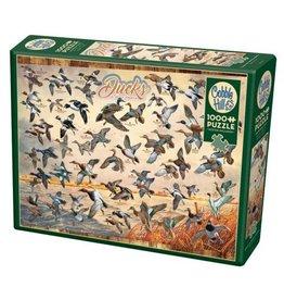 Cobble Hill Ducks of North America - 1000 Piece Puzzle