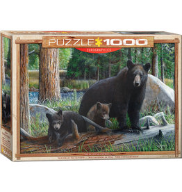 Eurographics New Discoveries - 1000 Piece Puzzle