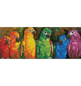 Diamond Dotz Rainbow Parrots - Facet Art Kit