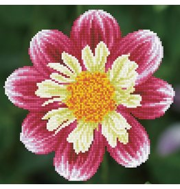 Diamond Dotz Daisy a Day - Facet Art Kit