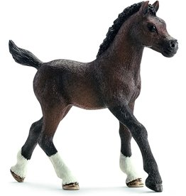 Schleich 13762 - Arabian Foal