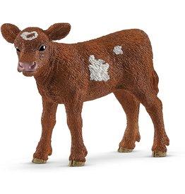 Schleich 13881 - Texas Longhorn Calf
