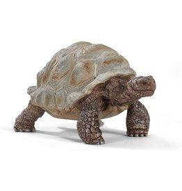 Schleich 14824 - Giant Tortoise
