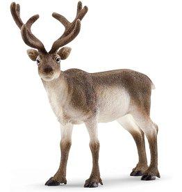 Schleich 14837 - Reindeer