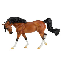 Breyer Raia - Limited Edition