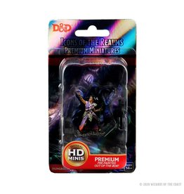 Wizkids D&D: IR: Prem: Human Warlock (She/Her/They/Them)