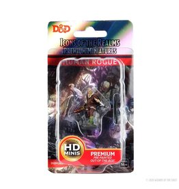 Wizkids D&D: IR: Prem: Human Rogue (He/Him/They/Them)