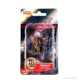 Wizkids D&D: IR: Prem: Dragonborn Sorcerer (She/Her/They/Them)