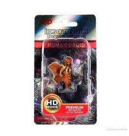 Wizkids D&D: IR: Prem: Human Druid (He/Him/They/Them)
