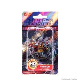 Wizkids D&D: IR: Prem: Dragonborn Fighter (He/Him/They/Them)