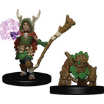WIZKIDS/NECA Wardlings Boy Druid & Tree Creature W1