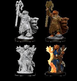 WIZKIDS/NECA D&DNMUM Dragonborn Female Sorcerer W8