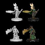 WIZKIDS/NECA D&DNMUM Elf Druid Female W4