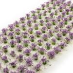 Huge Miniatures Purple Flowers