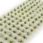 Huge Miniatures White Flowers