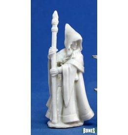 Reaper Bones: Anirion Wood Elf Wizard