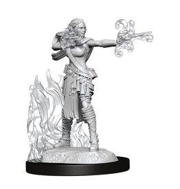 WIZKIDS/NECA D&DNMUM Multiclass Warlock-Sorcerer Female W13