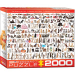 EuroGraphics The World of Cats 2000pc