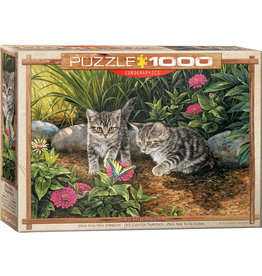 EuroGraphics Double Trouble 1000pc