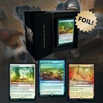 WOTC MTG MTG Secret Lair Every Dog Has Its Day (FOIL)
