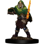 WIZKIDS/NECA D&DIotR PF Elf Fighter Male W5