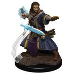 WIZKIDS/NECA D&DIotR PF Human Wizard Male W5