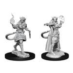WIZKIDS/NECA D&DNMUM: Tiefling Sorcerer Female W15