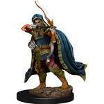 WIZKIDS/NECA D&DIotR PF Elf Rogue Male W6