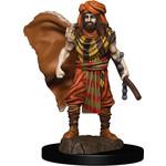 WIZKIDS/NECA D&DIotR PF Human Druid Male W4