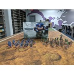 Games Workshop Warhammer 40,000 Indomitus 2020 Painted