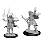 WIZKIDS/NECA PFDUM Elf Sorcerer Male W14