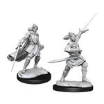 WIZKIDS/NECA CRUM: Half-Elf Paladin Xhorhas Female W1