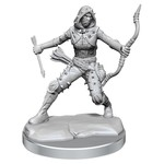 WIZKIDS/NECA D&D Frameworks: Human Rogue Female FW01