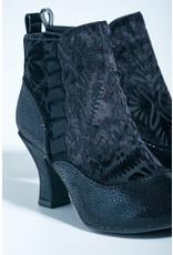 Ruby Shoo Ruby Shoo - Antoinette (black velvet)