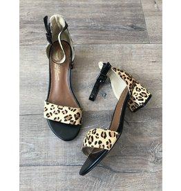 Very Volatile Senoia (tan/leopard)