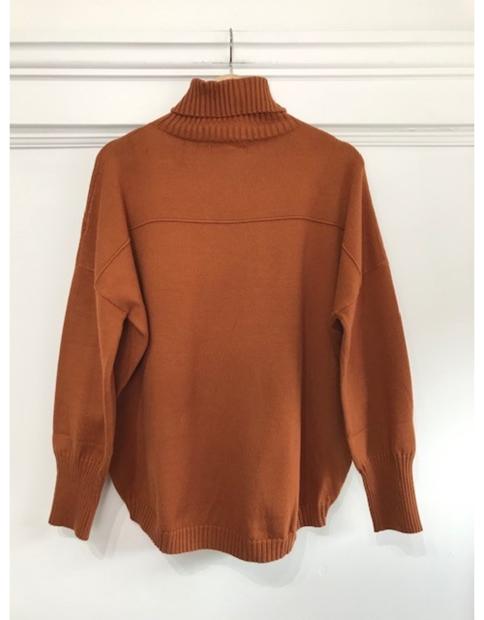 Papillon Papillon - Roll neck sweater (rust)