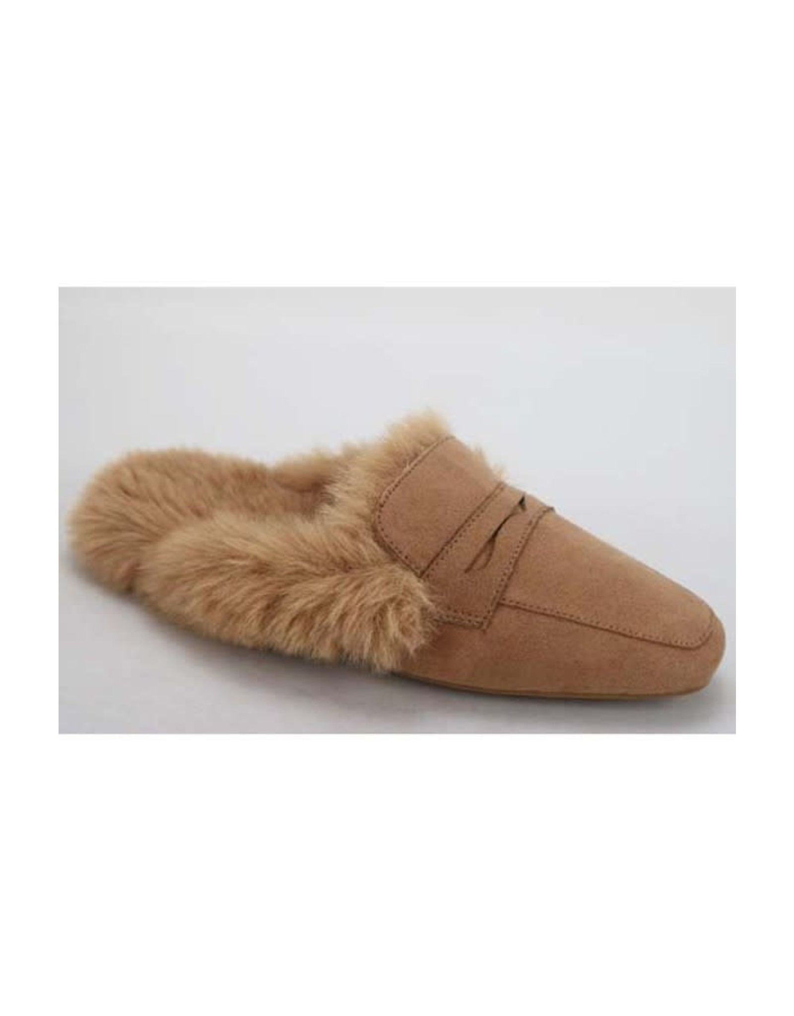 Sweep - Fuzzy mules (camel)