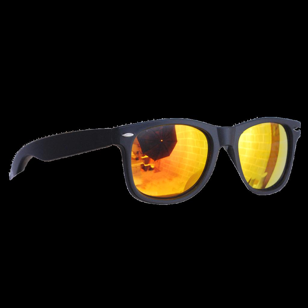 THE COACH Matte Black Sunglasses