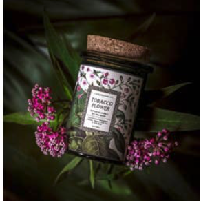 Botanica Candle | Tobacco Flower-1
