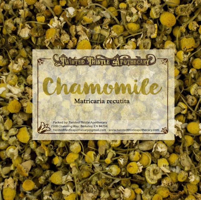 Chamomile-1